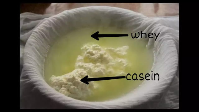how is whey protein made?